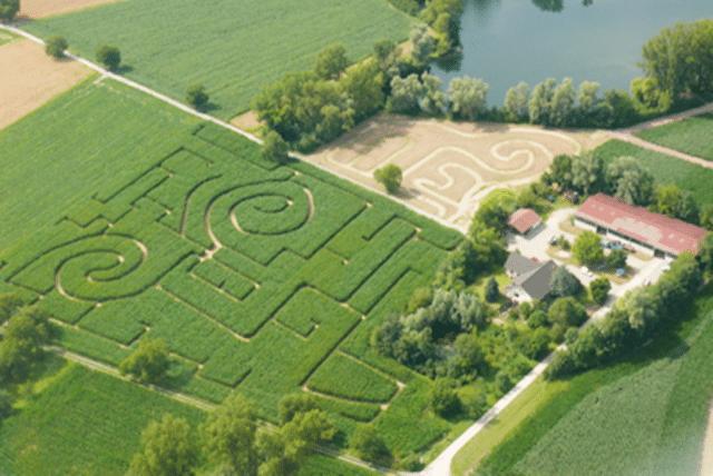 Maislabyrinth Karlsruhe