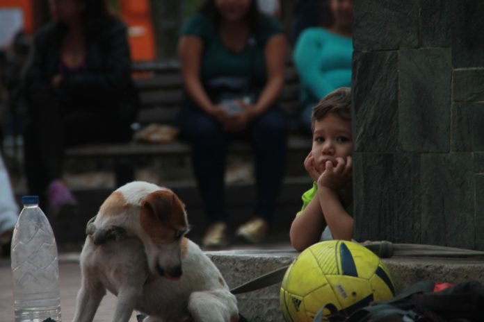 Kinder-Armut in Baden-Würrtemberg wird immer größer - Hier ein trauriges Kind zusehen