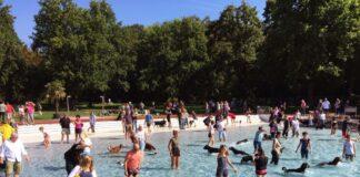 Kurios! Hundeschwimmen in Karlsruher Freibad